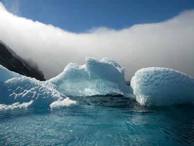 Ted Tatarzyn - Antarctic Photograph